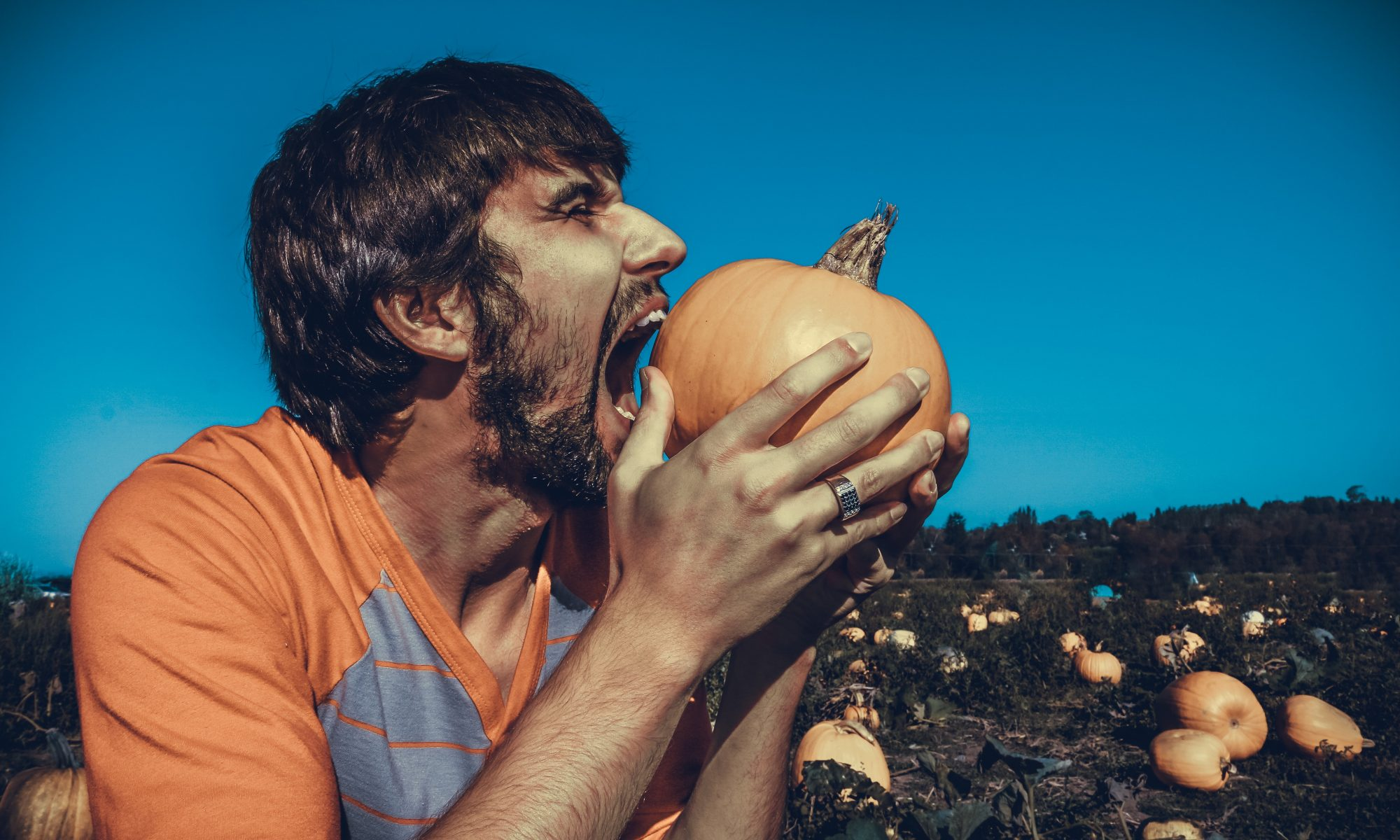 guy biting whole pumpkin in a field